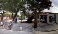 Wilhelminda Park