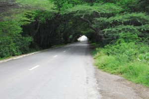 Curacao road