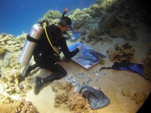 Painting under water