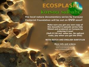 Ecosplash
