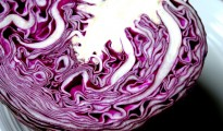 purple-cabbage-half