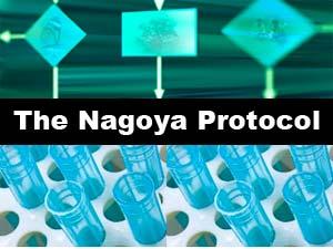 the-nagoya-protocol