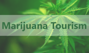 Marijuana-Tourism-750x450