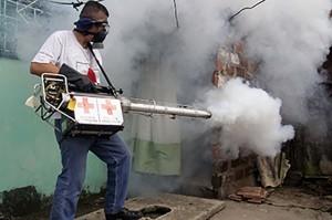 chikungunya-7401