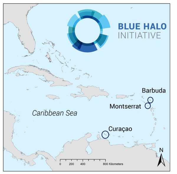 Blue-Halo-Initiative-Caribbean-Map-copy-600x590