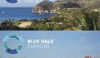 Blue-Halo-Initiative-launch-600x600