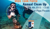 Dive Task Force Clean Up 2015
