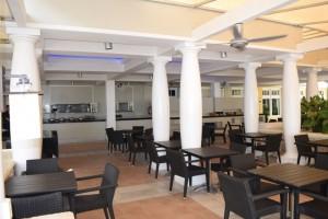 Palm Cafe 3