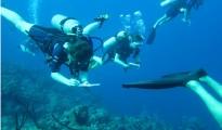 scientist-on-reef