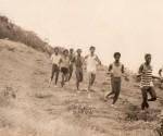veld-salu-1972