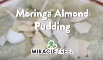 moringa-pudding