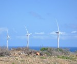 curacao-wind-farm