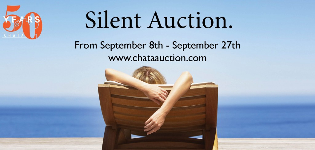 Silent Auction Banner Teaser