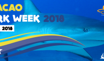 Curacao Shark Week cover